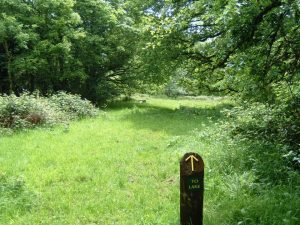 Signposted walks